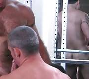 Three Hairy Dudes Get Very Horny 3