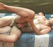 Horny Bears Are Fucking With All Their Lust 1