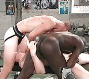 Three Friends Are Fucking After Workout 1